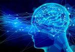 最新脳科学を用いた暗記の記憶法