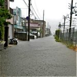 台風19号,千葉県千葉市蘇我の被害