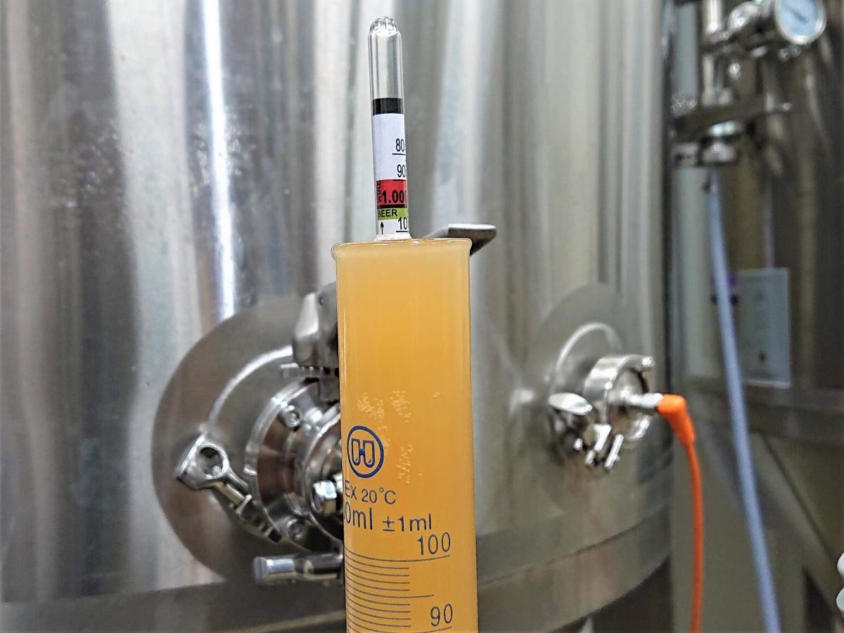 ビールの密度測定