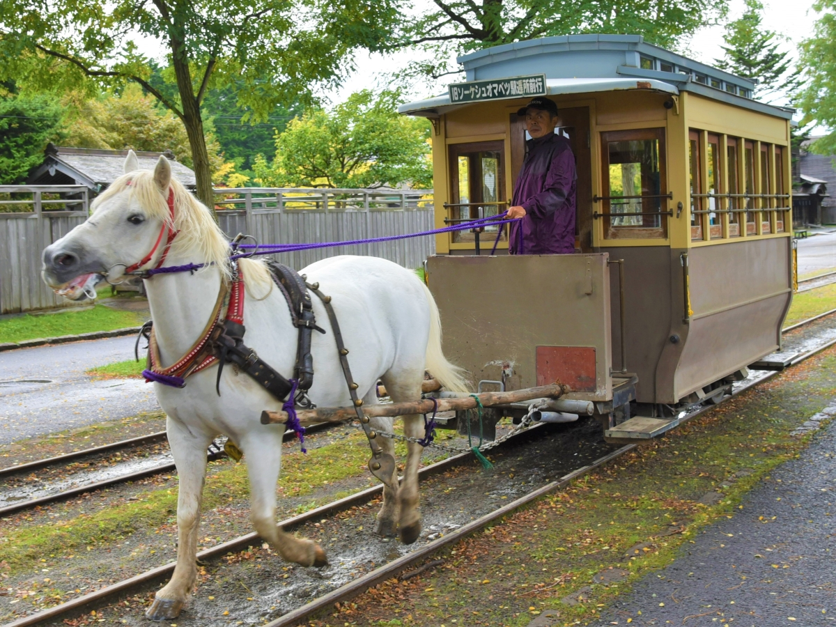 北海道開拓の村の馬車